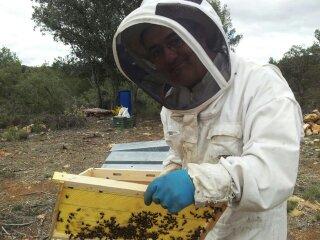 Pasión por la miel
