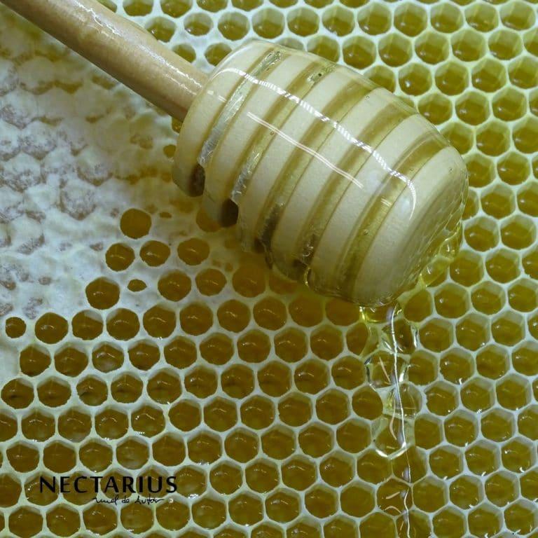 ¿Qué es La miel de la Alcarria?